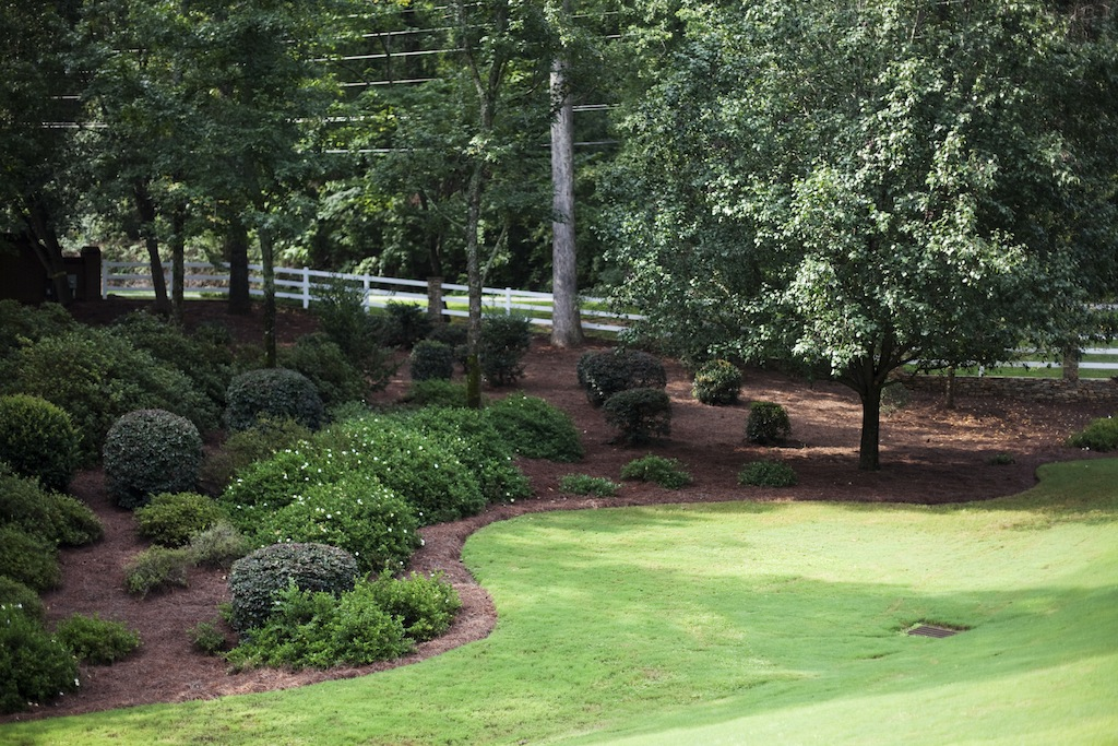 Landscaping Bed on Gentle Slope | Erosion Control