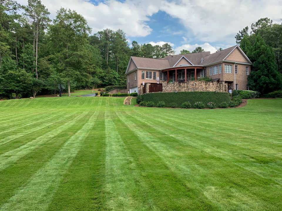 lawn maintenance macon